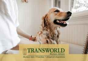 pet-spa-and-day-care-south-carolina