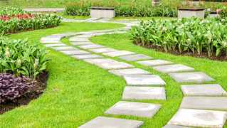 Landscaping & Snow Removal Business
