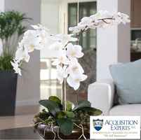 first-class-interiorscapes-plant-company-florida