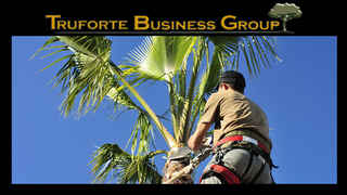 tree-services-manatee-county-florida