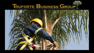 tree-service-business-saint-petersburg-florida