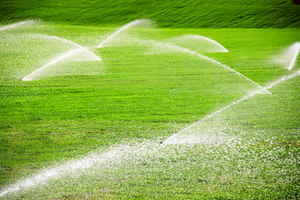 irrigation-servicing-company-florida