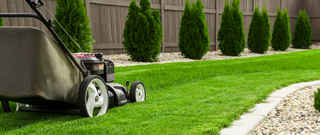 Established Lawn Maintenance & Landscaping Company