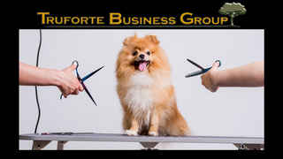 pet-grooming-business-for-sale-charlotte-county-port-charlotte-florida