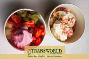 frozen-yogurt-and-gelato-store-for-sale-texas