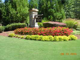 commercial-and-residential-landscaping-company-georgia
