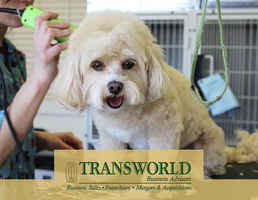 mobile-pet-grooming-business-for-sale-dallas-texas