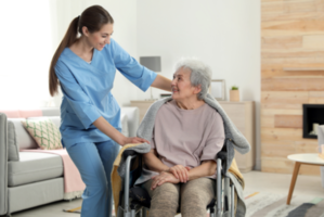 Licensed Home Care and Home Health Care Franchise