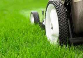 full-service-lawn-and-gardening-business-riverside-city-california