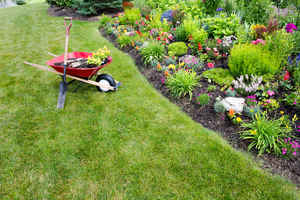 Landscaping Client List for Sale - Make an Offer