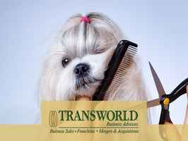 A Very Well Established Delray Beach Dog Groomer